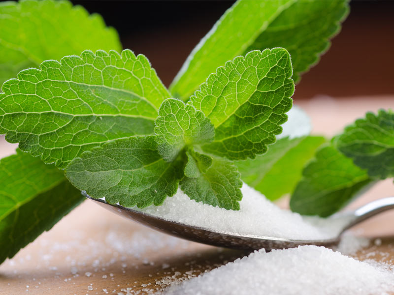 A leaf from the stevia plant sitting next to a pile of the natural sweetener.